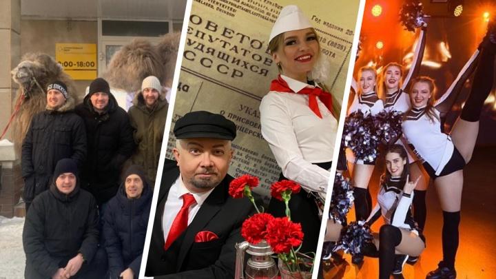 Жаркие танцы, назад в90-е и живой верблюд: выбираем лучшее в Екатеринбурге офисное поздравление с23Февраля