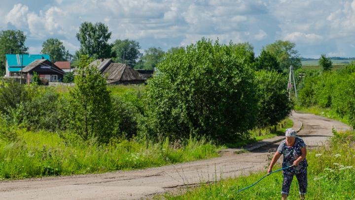 Лютые Болоты, Животинки и Страдань: аналитики изучили интересные названия населенных пунктов Прикамья