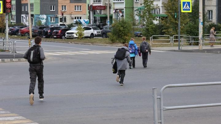 «Так переходят дорогу в деревне»: как светофор возле ЖК «Ньютон» рассорил водителей и пешеходов