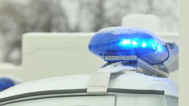 В поселке под Екатеринбургом мужчина подстрелил знакомого, который залез в его дом