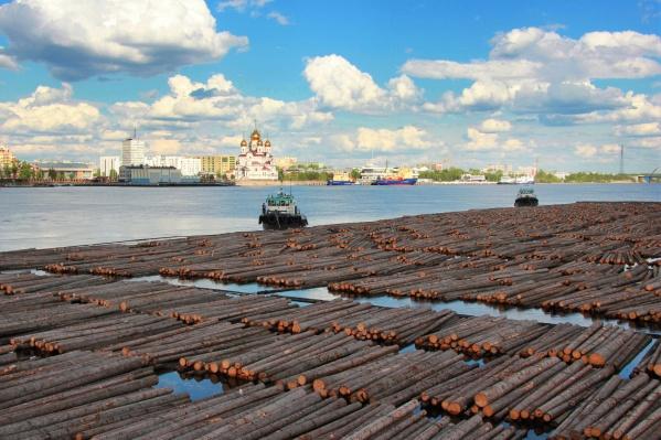 """Так выглядят плоты, которые буксирами доставляют по Северной Двине, на АЦБК и «<nobr class=""""_"""">Лесозавод 25</nobr>»"""