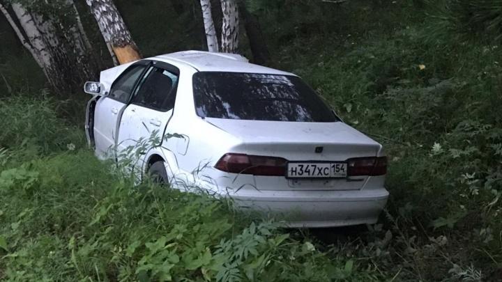 Водитель без прав въехал в дерево в Мошковском районе — мужчина погиб