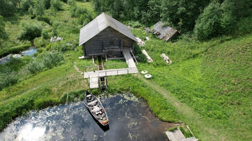 Сказочные леса и озера вдали от города: смотрим на природу Кенозерья с высоты и вблизи