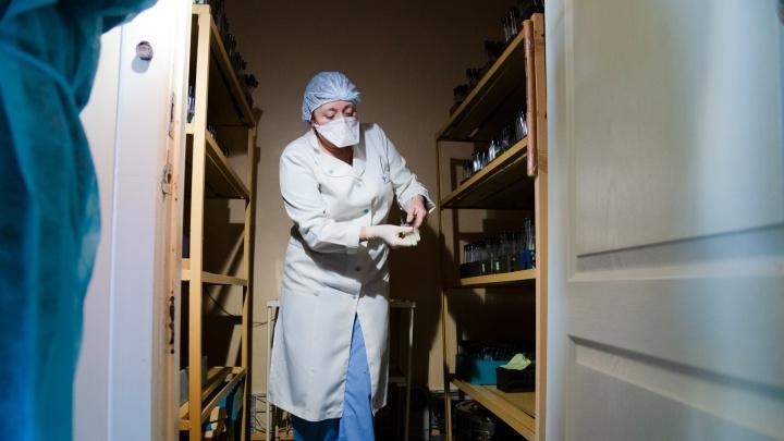 Как выглядят и в чем хранятся палочки Коха: фото из лаборатории по диагностике туберкулеза в Соломбале