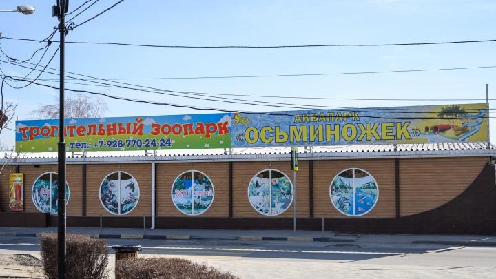 Власти Ростова нашли причину снести аквапарк «Осьминожек». Его совладельцами была семья Бабаевых