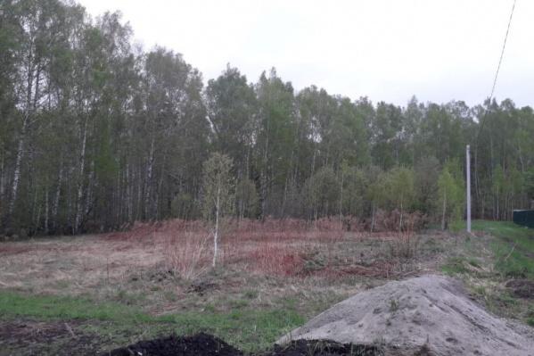 Эпицентр землетрясения находится недалеко от Колыванского угольного разреза