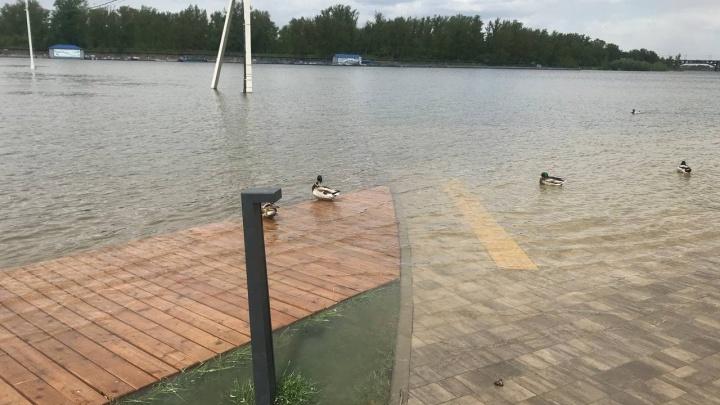 «Такое бывает раз в сто лет»: Енисею в июне предрекли аномально сильный паводок