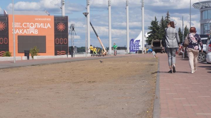 Спалённые солнцем. Нижегородская мэрия прокомментировала отсутствие системы автополива газонов