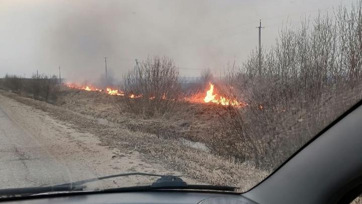 «Готовились, что пламя перекинется на дом»: Ярославскую область объяли пожары. Что происходит