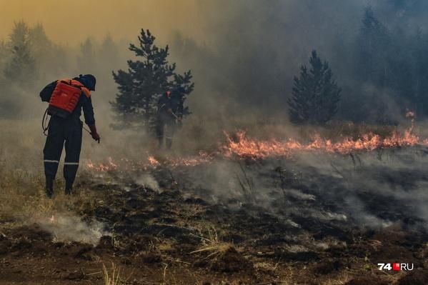 С пожарами боролись больше пяти дней