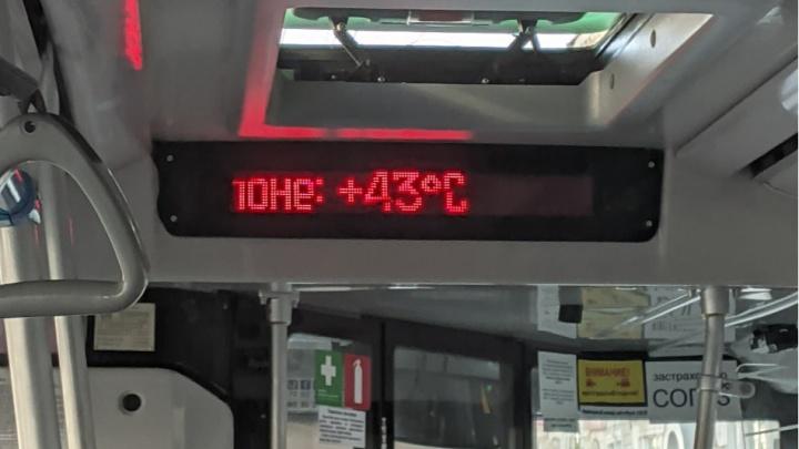 В салонах +43, люди падают в обмороки: как Екатеринбург «нагрели» с новыми автобусами