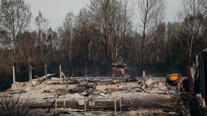 Жителям тюменского СНТ «Солнышко», где выгорело 25 домов, дадут денег. Сколько и как их получить?