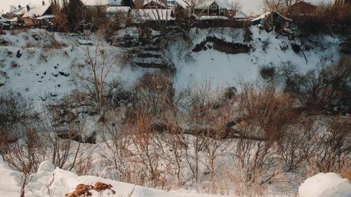 Кампуса не будет — власти отказались от строительства в логу реки Тюменки