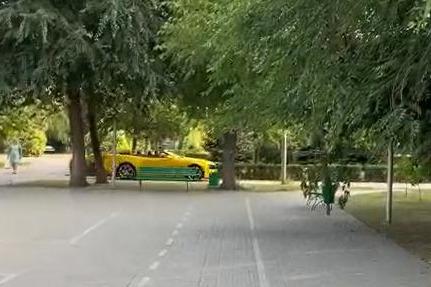 «Мы просто снимали пранк»: «Мисс Волгоград» прокатилась на желтом кабриолете в парке Саши Филиппова