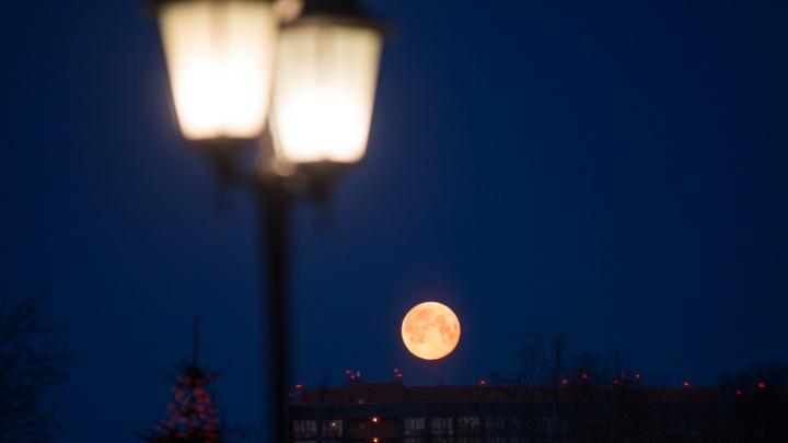 Смотрите в небо: над Екатеринбургом взойдет суперлуна