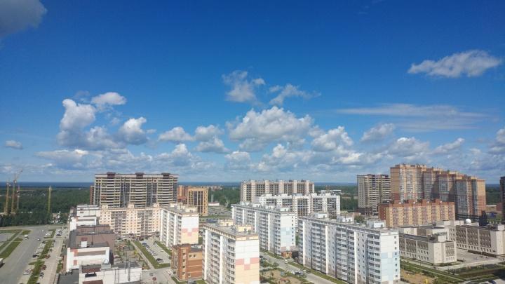 В Новосибирской области приняли новое постановление — в нем прописали критерии проблемных застройщиков