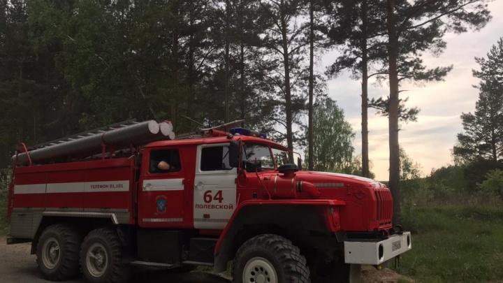 Шли на звук сирены: на Урале сотрудники МЧС спасли двух детей, потерявшихся в лесу