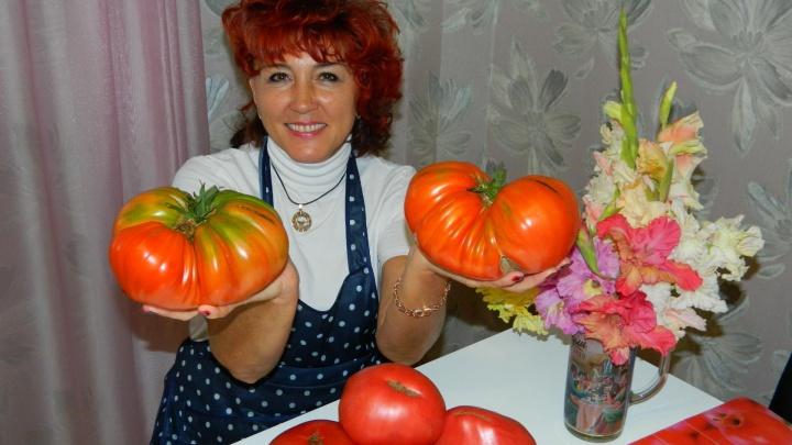 Жительница Минусинска, ведущая блог о помидорах, признана «Звездой Рунета»