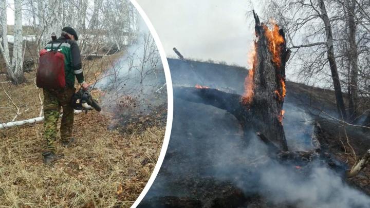 Спасатели и чиновники объяснили, почему южноуральцам запретили заходить в леса и жечь костры
