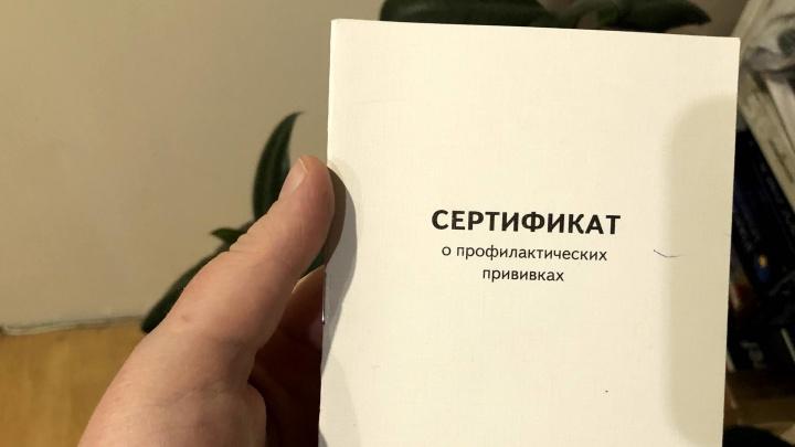 В Красноярске возбуждено первое дело о подделке прививочных сертификатов