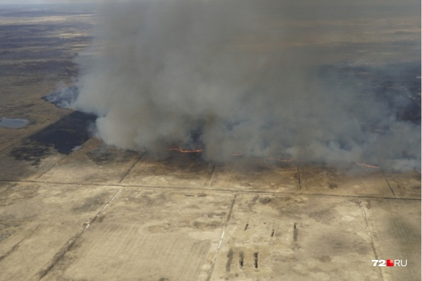 90% пожаров в тюменских лесах происходят по вине человека