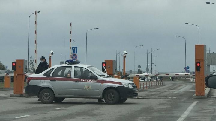 Собака «взяла» запах взрывчатки: почему в субботу оцепили пермский аэропорт