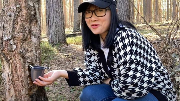 Вьетнамка сняла видео о том, как собирает березовый сок в Прикамье