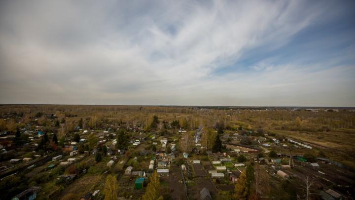 Трем новосибирцам вынесли приговор за мошенничество с землей— они подделали бумаги и обманули мэрию