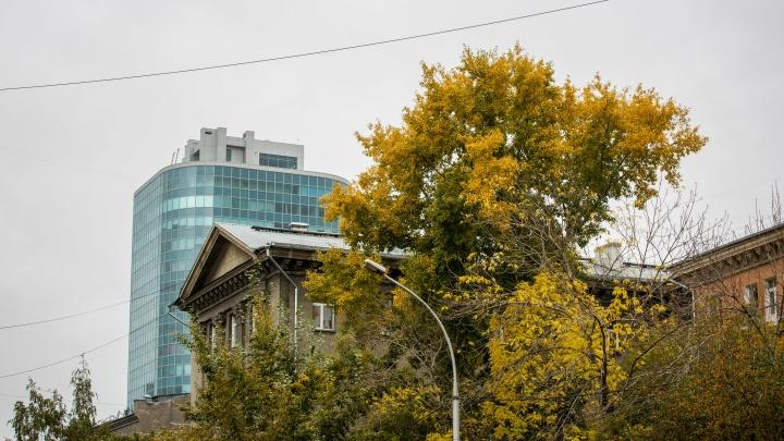 Вернется ли тепло в Новосибирск или сохранится дождливая погода? Мы узнали, чего ждать дальше