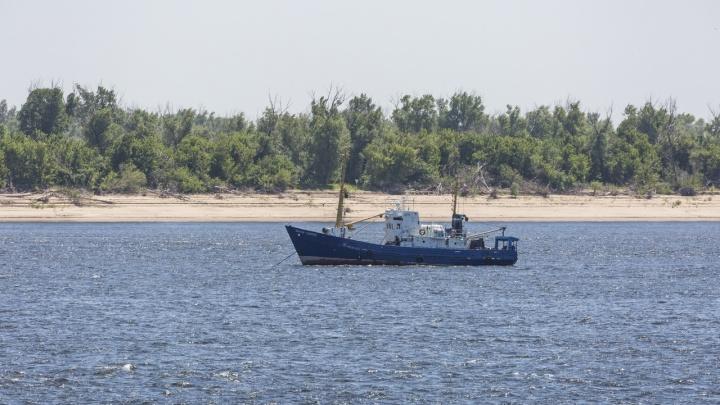 Волгоградский институт рыбного хозяйства получит корабль для подсчета рыбы