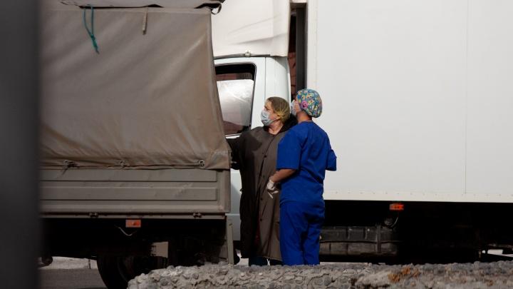 Привозят всё новых пациентов. Как выглядят сутки работы тюменского моногоспиталя — видео