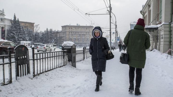 Повыплачивали и хватит: в Новосибирской области сократят объемы выплат безработным