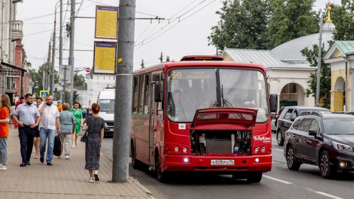 Ожидание vs реальность: почему в Ярославле не состоялась транспортная реформа и остались пазики