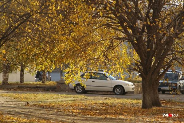 Минусовые температуры ожидаются в Зауралье по 21 сентября