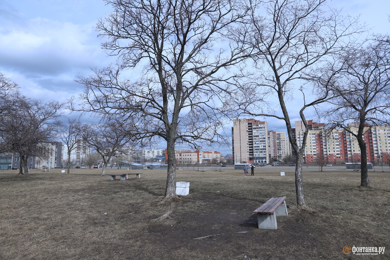 Федоровский сквер во Фрунзенском районе