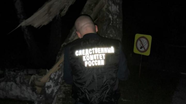 В Кузбассе на гостей свадьбы рухнуло дерево. Пострадали ребенок и молодой мужчина