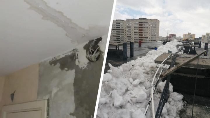 Тюменцы жалуются на протекающую крышу в многоэтажке. В их планах — обратиться в мэрию