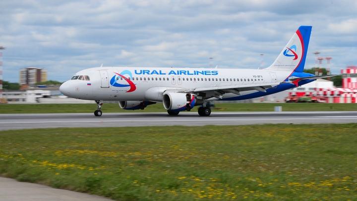 «Уральские авиалинии» добились права летать прямыми рейсами в Египет