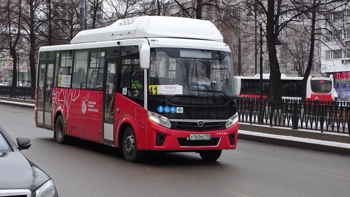 В Перми увеличат количество автобусов на маршруте №41