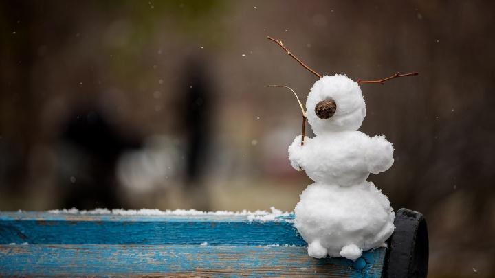 С 25 января морозы резко усилятся. В Новосибирской области похолодает до -40 и ниже