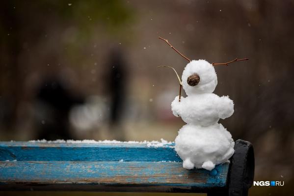 Сибирские морозы пришли в Новосибирск