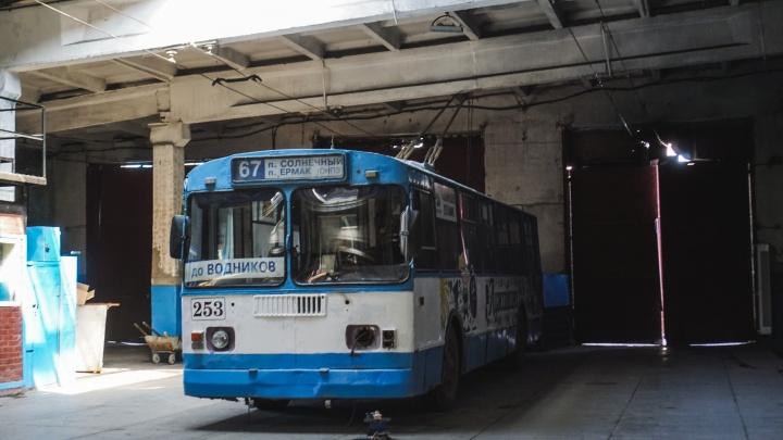 В мэрии рассказали, когда троллейбусы вновь начнут ездить «до Водников»