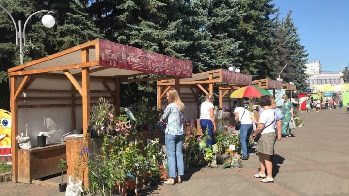 В Центральном парке проходит выставка плодов и цветов, выращенных красноярцами