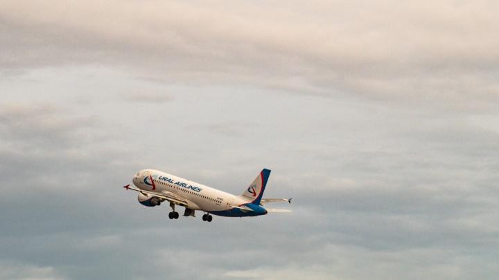 Авиакомпании открыли продажу билетов из Омска в Крым за 5тысяч рублей