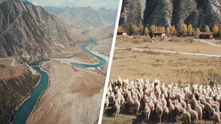 Новосибирский блогер снял на видео осенний Горный Алтай — посмотрите на эти живописные кадры