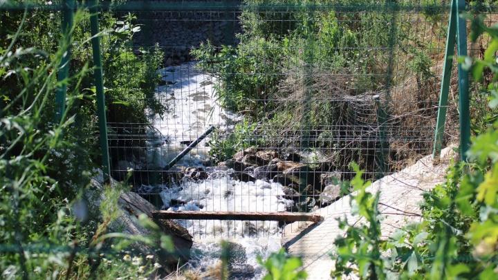Минприроды нашло подрядчика, который очистит реку Темерник