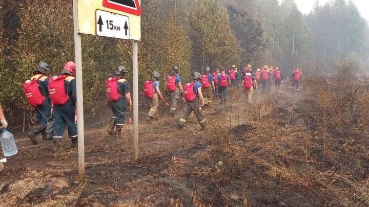 Три недели в огне. Межрегиональный режим ЧС введен в Нижегородской области и Мордовии из-за лесных пожаров