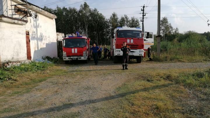 Из-за лесного пожара под Первоуральском эвакуируют дачников и детей из санатория
