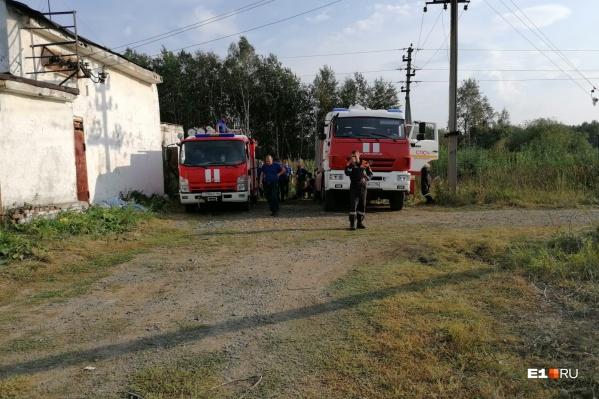 Пожар возле Хомутовки начался неожиданно