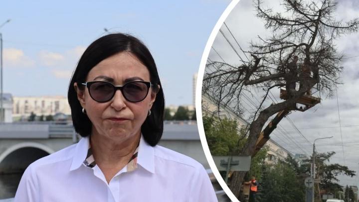 Мы спросили мэра о роли ее зама и главы КДХ в сносе векового дерева в центре Челябинска. И вот что она сказала